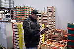 BERLIN 12.2016. German Wrestler RAMBO MICHEL BRAUN alias EL COMANDANTE RAMBO at work. Rambo works at Berliner Gro&szlig;markt for LYKOS selling Greek groceries and restaurant apparel.<br /><br />Other trainers are: Crazy Sexy mike (Hussein Chaer, man with headband) and Ahmed Chaer (man with beard) (Photo by Gregor Zielke)