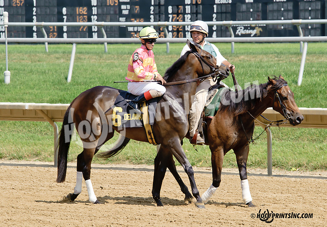 Dance Craze before The Christiana Stakes at Delaware Park on 7/9/14