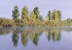 Volga River delta, Caspian Sea, Russia