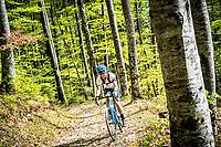 Gravel biking on forest roads outside of Interlaken, Switzerland