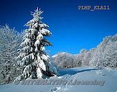 Marek, CHRISTMAS LANDSCAPES, WEIHNACHTEN WINTERLANDSCHAFTEN, NAVIDAD PAISAJES DE INVIERNO, photos+++++,PLMPKLA11,#xl#
