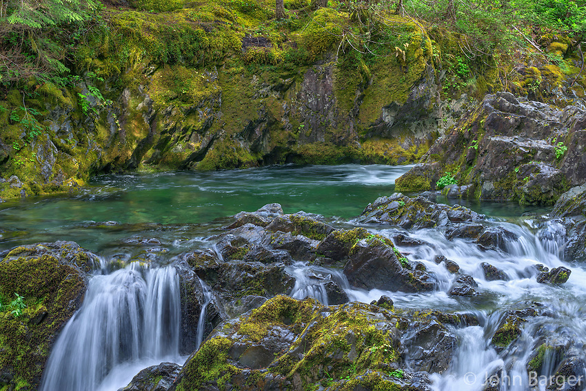 ORCAN_D111 - USA, Oregon, Willamette National Forest, Opal Creek Scenic Recreation Area, Multiple small falls and swift flow of Opal Creek with surrounding lush vegetation.