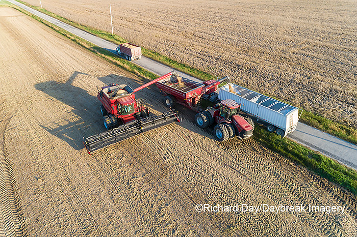 63801-13405 Unloading soybeans into truck during harvest-aerial  Marion Co. IL