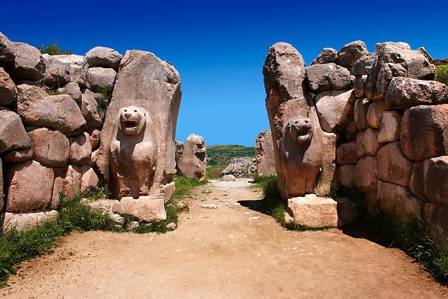 Photo of the Hittite releif sculpture on the Lion gate to the Hittite capital Hattusa 8