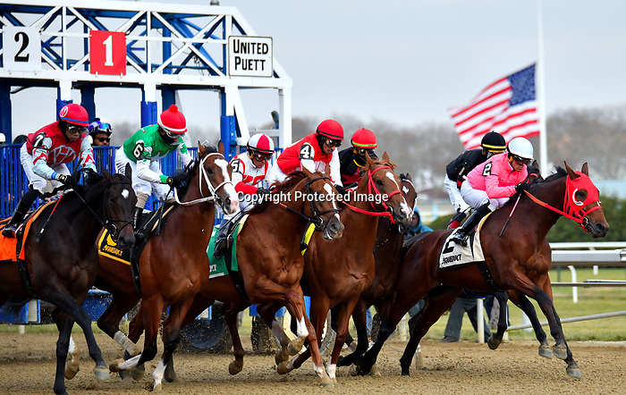DECEMBER 01, 2018 : #6 Maximus Mischief, ridden by Frankie  Pennington, wins the Remsen at Aqueduct Racetrack on December 01, 2018 in Ozone Park, NY. Dan Hearyi/ESW/CSM