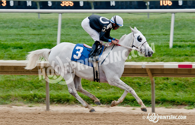 Litle Bit winning before being disqualified at Delaware Park on 9/21/13