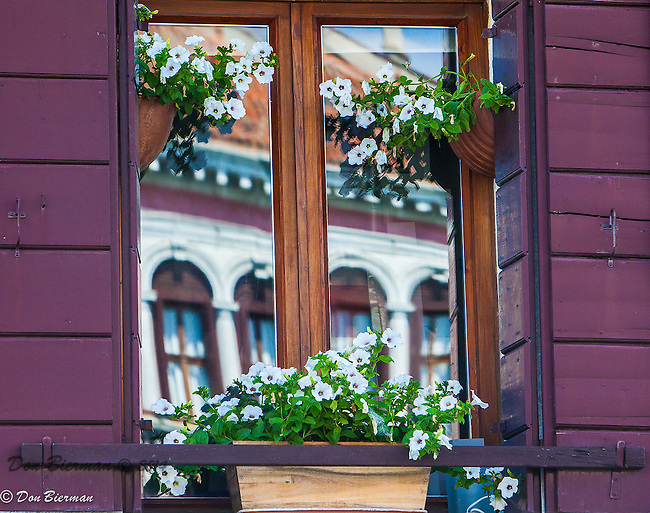 Colorful flower-adorned  window and shutter treatments line the streets of Venice, Italy.