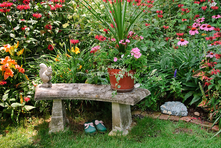 Garden Bench in colorful flower garden in summer,mix of perennials and annuals, with cement squirrel ornament, container garden pot of ivy geranium and vinca and Dracena spikes, Welcome sign, daylilies Hemerocallis, red beebalm Monarda, garden clogs, Echinacea purpurea coneflower on sunny day with sun and shade aread