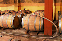 Barrels for storing the wine in wood. and a wine pump. Wine being pumped over from one barrel to another. Bodega Castillo Viejo Winery, Las Piedras, Canelones, Uruguay, South America