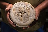 France, Aquitaine, Pyrénées-Atlantiques, Pays Basque, Vallée des Aldudes, Banca: Michel Bidart producteur de fromage de brebis : Ossau-Irraty , Gaec Ohako, Maison Ohakoa//  France, Pyrenees Atlantiques, Basque Country,  Aldudes Valley, Banca: