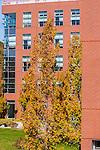 2012 URI Fall Campus shots
