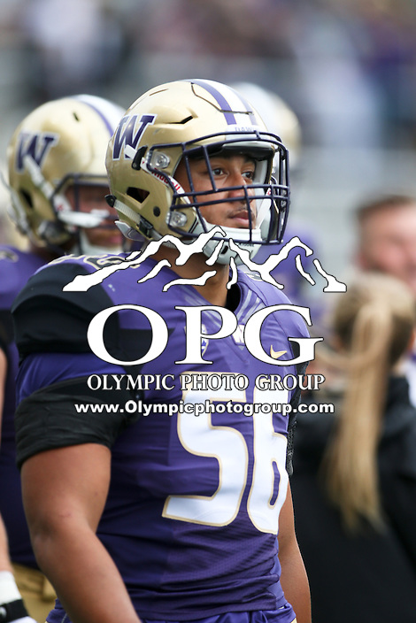 17 September 2016:   Washington's Jordan Pulu against Portland State. Washington defeated Portland State 41-3 at the University of Washington in Seattle, WA.
