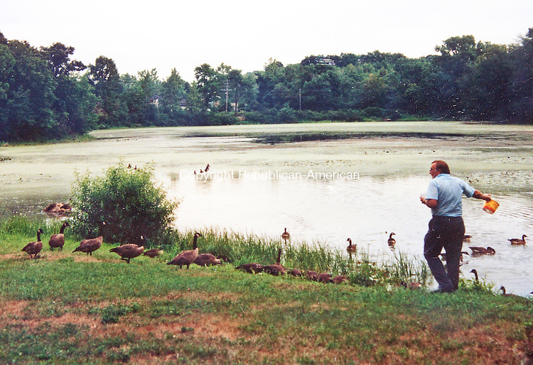 WATERBURY- JULY 10 2014 070914DA04- A photo of Wayne Thompson from several years ago when he was able to feed the geese at Pritchard's Pond in Waterbury before the water level problems destroyed the area.<br /> Darlene Douty Republican American