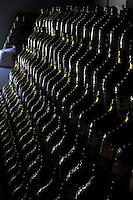 Caxias do Sul_RS, Brasil...Vinhedo Zanrosso em Caxias do Sul, Rio Grande do Sul...Zanrosso vineyard in Caxias do Sul, Rio Grande do Sul...Foto: MARCUS DESIMONI / NITRO