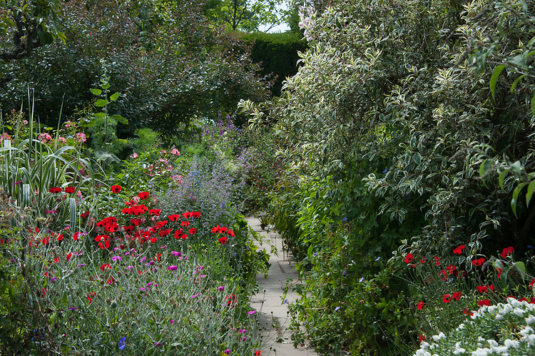 High Garden, Great Dixter, mid July.