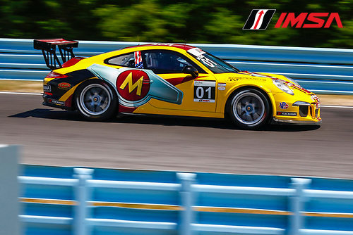 30 June-2 July, 2016, Watkins Glen, New York USA<br /> 01, Jeff Mosing, Platinum, M, 2016 Porsche<br /> &copy;2016, Jake Galstad<br /> LAT Photo USA