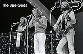 THE BEE GEES (1974)