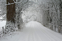 Snow on a country lane between Dunsop Bridge and Chipping, Lancashire. Little Bowland Road.