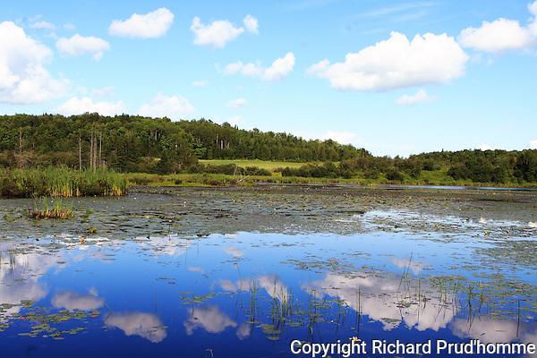 wetlands next to farm fields