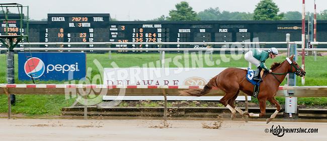 Frat Man winning at Delaware Park on 8/1/13