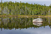 Reflection of forest in Shoal Pond in Lincoln, New Hampshire during the summer months. This backcountry pond is located along the Shoal Pond Trail in the 45,000-acre Pemigewasset Wilderness.