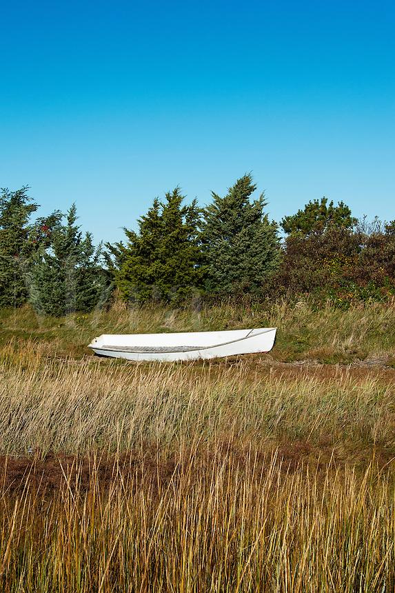 Rowboat in marsh grass, Martha's Vineyard, Massachusetts, USA