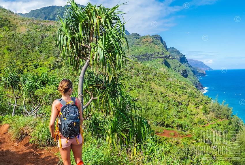 A hiker on the Kalalau Trail looks out over the Napali (or Na Pali) coastline, Kaua'i.