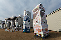 Models of milk cartons and cows stand outside the Rakuou Milk products factory in Koriyama, Fukushima, Japan Sunday November 22nd 2015