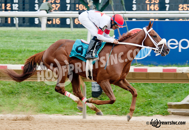 Bellamy Fleet winning at Delaware Park on 9/21/13