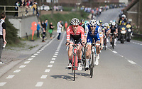 Jasper Stuyven (BEL/Trek-Segafredo) &amp; Tom Boonen (BEL/Quick-Step Floors) leading the race<br /> <br /> 101th Ronde Van Vlaanderen 2017 (1.UWT)<br /> 1day race: Antwerp &rsaquo; Oudenaarde - BEL (260km)