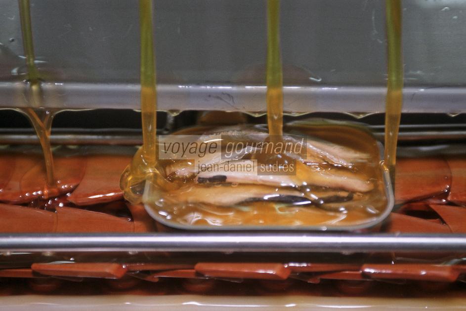 Europe/France/Bretagne/29/Finistère/Douarnenez: Conserverie de Sardines Chancerelle-Connetable / Sardines Label Rouge / Les boites sont remplies d'Huile
