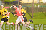 Tom Fitzgerald (Brosna) and Eoin O'Carroll(Asdee)