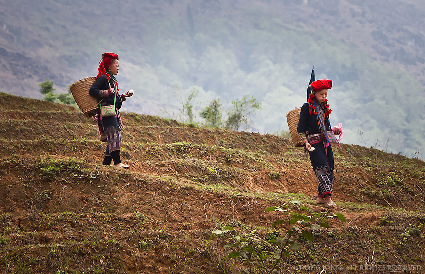 These young girls wear the traditional clothing of the Red Dzao while taking a shortcut through a terraced ricefield in Sapa, Vietnam.