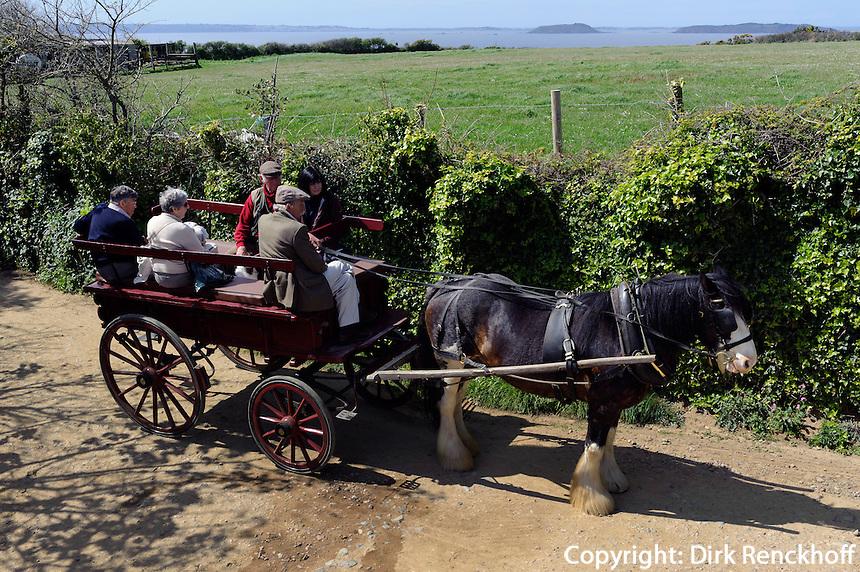 Pferdekutsche auf Little Sark, Insel Sark, Kanalinseln