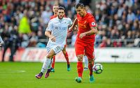 Borja Gonzalez of Swansea City  chases Dejan Lovren of Liverpool during  the Premier League match between Swansea City and Liverpool at The Liberty Stadium on October 1, 2016 in Swansea, Wales.