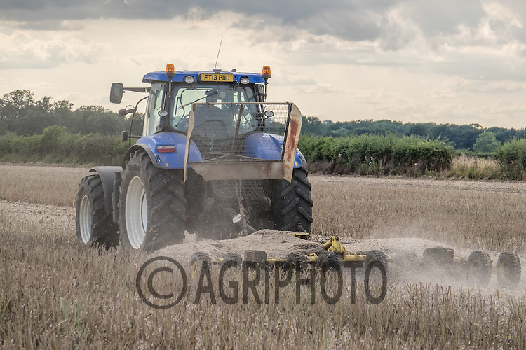 Topping oilseed rape stubble<br /> Picture Tim Scrivener 07850 303986<br /> &hellip;.Covering agriculture in the UK&hellip;.