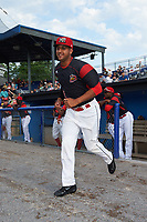Batavia Muckdogs pitcher Jeremy Ovalle (31) jogs to the field during introductions before a game against the Auburn Doubledays on June 19, 2017 at Dwyer Stadium in Batavia, New York.  Batavia defeated Auburn 8-2 in both teams opening game of the season.  (Mike Janes/Four Seam Images)