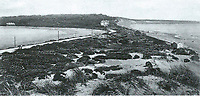 BNPS.co.uk (01202 558833)<br /> Pic: PHT/BNPS<br /> <br /> 1907 - Distant view of the Sandbanks Hotel, one of the earliest buildings on the now exclusive peninsula.<br /> <br /> Plans to transform the millionaire's resort of Sandbanks into 'Britain's Miami Beach' with two new superhotel's and apartments as part of a &pound;250m development have been unveiled. <br /> <br /> A pair of century-old hotels on the exclusive Dorset peninsula will be bulldozed to make way for an extravagant five star hotel on the beach and a smaller hotel with apartments on the cliffs above.<br /> <br /> The luxurious 175 room establishment will replace the existing Sandbanks Hotel, a former Victorian seaside villa built in the 1880s that is now 'coming to the end of its economic life cycle.'<br /> <br /> In keeping with the Miami Beach look, the super hotel will be Art-Deco in style, have curved floors and painted white with palm trees in the grounds.<br /> <br /> The existing historic Harbour Heights Hotel will also be demolished to make way for the second part of the radical development.