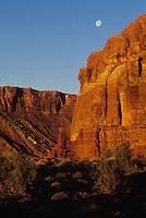 Golden cliffs lit by sunrise w/moon-Arches National Park, Utah