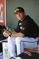 University of Louisville Cardinals manager Dan McDonnell (3) before a game against the Temple University Owls at Campbell's Field on May 10, 2014 in Camden, New Jersey. Temple defeated Louisville 4-2.  (Tomasso DeRosa/ Four Seam Images)