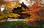 Tenju-an Japanese Temple main hall in beautiful autumn scenery of a temple garden. Nanzen-ji complex in Sakyo-ku, Kyoto, Japan 2017 Image © MaximImages, License at https://www.maximimages.com