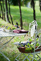 Fresh grapes picked from the vineyard sit in a wicker basket waiting to be put in silver fruit bowls for an al fresco celebration