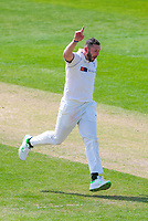 Picture by Alex Whitehead/SWpix.com - 21/04/2018 - Cricket - Specsavers County Championship Div One - Yorkshire v Nottinghamshire, Day 2 - Emerald Headingley Stadium, Leeds, England - Yorkshire's Tim Bresnan celebrates the wicket of Notts' Luke Wood.