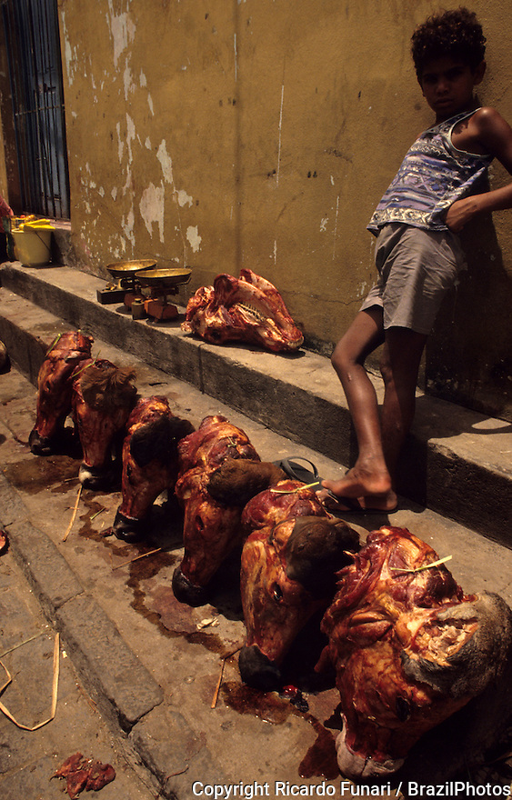 Child labor, heads of cattle for sale at open-air market exposed to the sun - cultural traditions, unhealthy habits, no health surveillance. Valente city, Bahia State, northeastern Brazil.