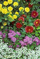 HS47-010a  Flower Garden