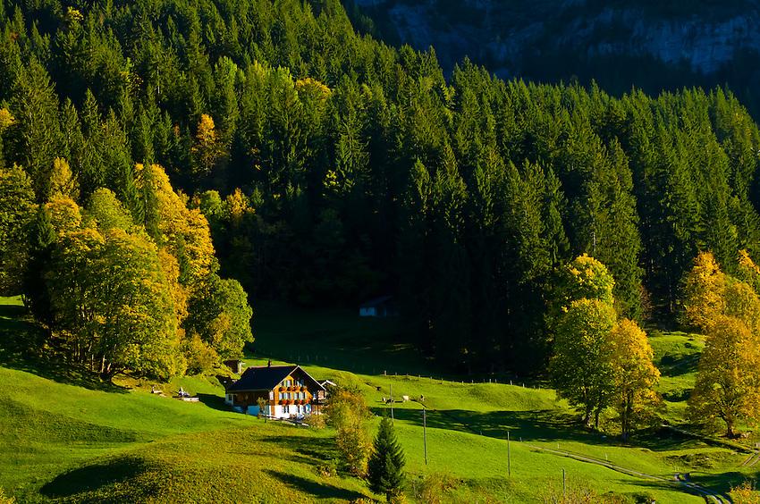 Grindelwald, Swiss Alps, Canton Bern, Switzerland