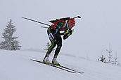 8th December 2017, Biathlon Centre, Hochfilzen, Austria; IBU Womens Biathlon World Cup;  Denise Herrmann