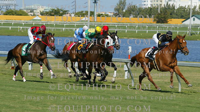 Thoroughbred action at Gulfstream Park Racetrack and Casino in Hallandale Beach, Florida. 2007. Photo By EQUI-PHOTO.