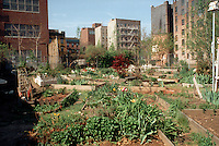 Community garden on vacant land in the East Village of NYC. (© Frances M. Roberts)