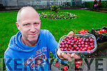 Kevin Falvey, who is Kerry's first ever cranberry producer.